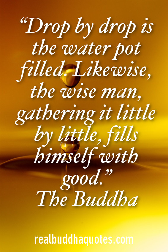 Drop Quotes Drop by drop is the water pot filled. Likewise, the wise man  Drop Quotes