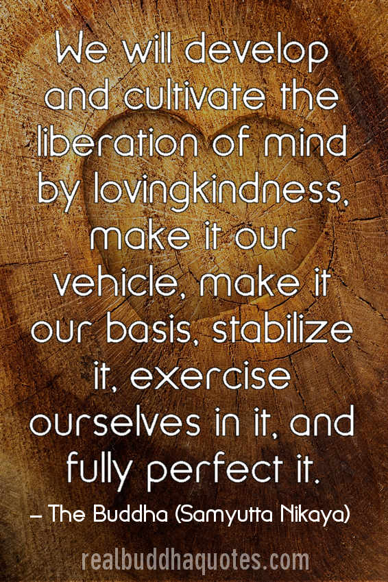 Loving Kindness Quotes Gorgeous We Will Develop And Cultivate The Liberation Of Mind.
