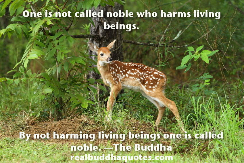 One is not called noble who harms living beings