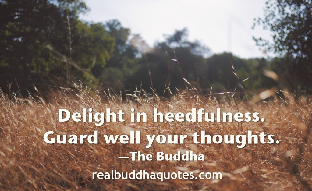 delight in heedfulness, guard well your thoughts
