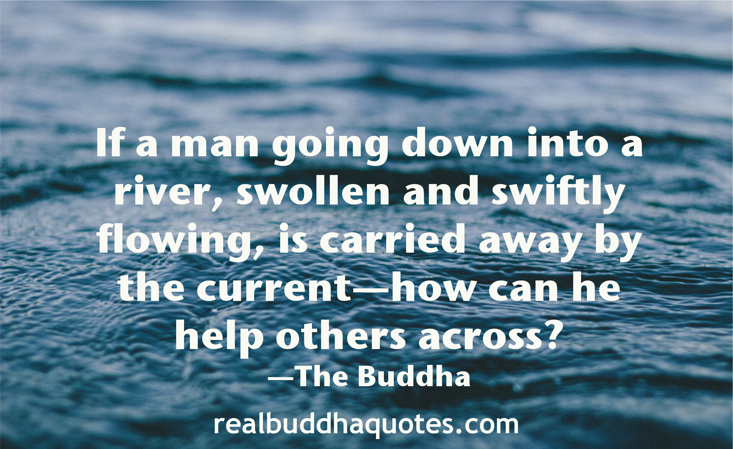 Quotes About Helping Compassion  Real Buddha Quotes