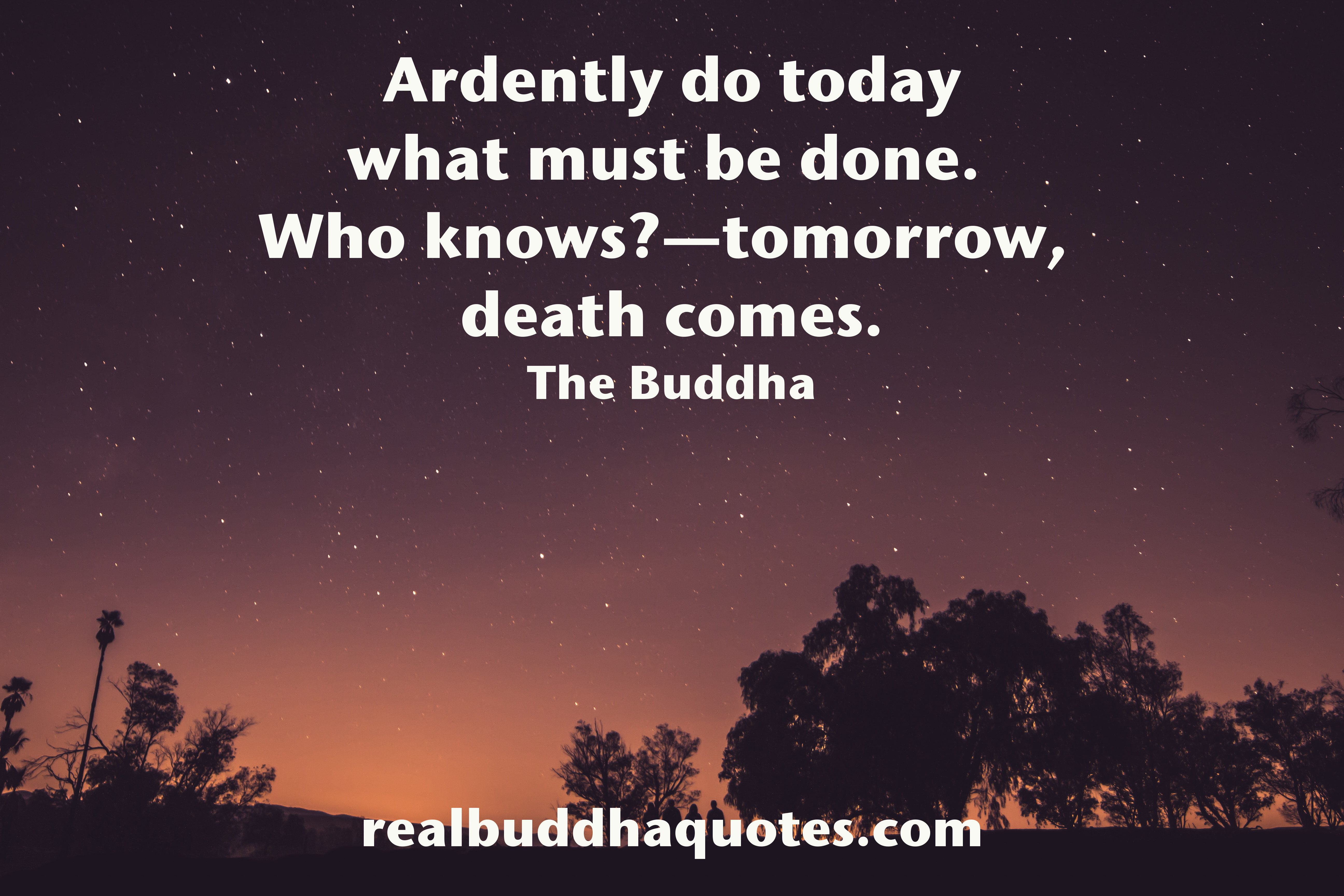 Quotes On Death Impermanence  Real Buddha Quotes
