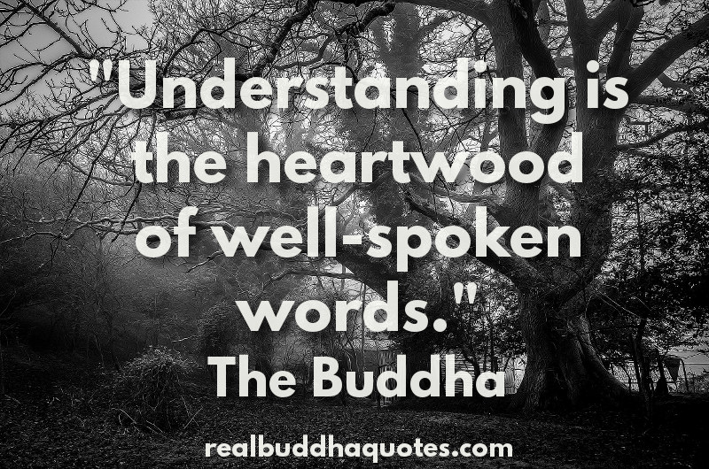 understanding is the heartwood