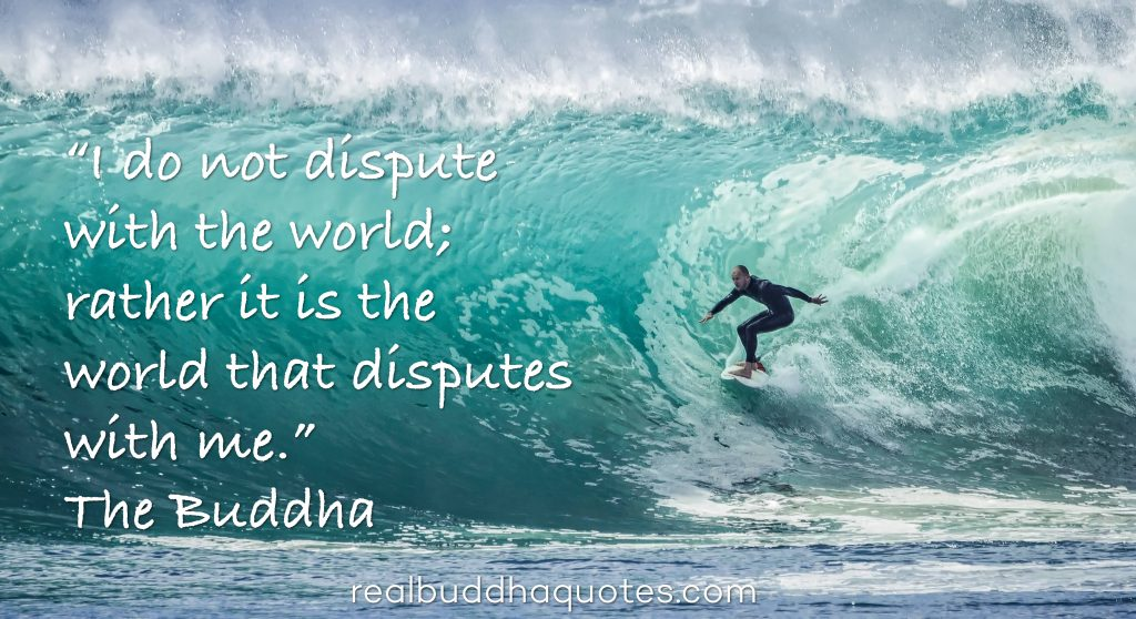 i-do-not-dispute-with-the-world